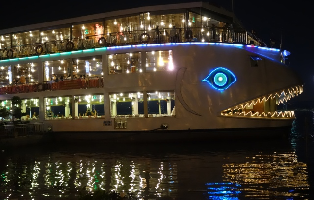 Many large River Cruises --we just looked at the lights