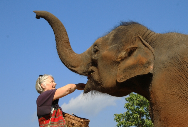 Feeding our elephant to establish a bond for the day