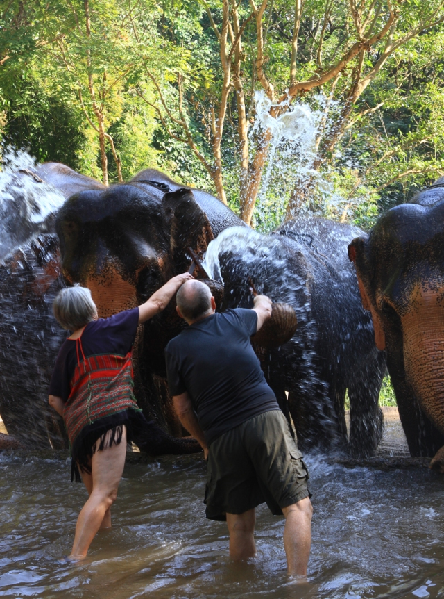 The elephants lined up to get the last splashes