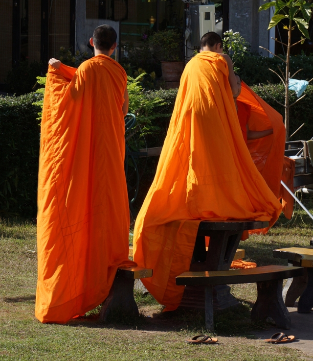 Novice monks learning how to put on their robes