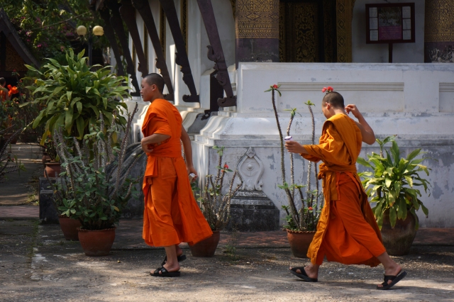 Monks heading to van for trip